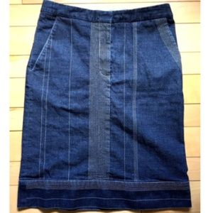 Poleci Skirt Size 4 Blue With Pockets Pinstripe